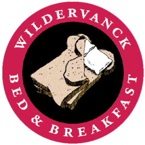 Wildervanck_logo